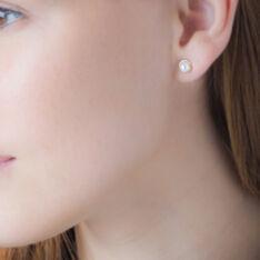 Boucles D'oreilles Puces Siera Or Jaune Perle De Culture - Clous d'oreilles Femme | Marc Orian
