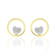 Boucles D'oreilles Puces Raoule Or Bicolore - Clous d'oreilles Femme | Marc Orian