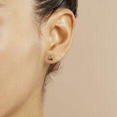 Boucles D'oreilles Puces Lapin Or Or Jaune - Clous d'oreilles Enfant | Marc Orian